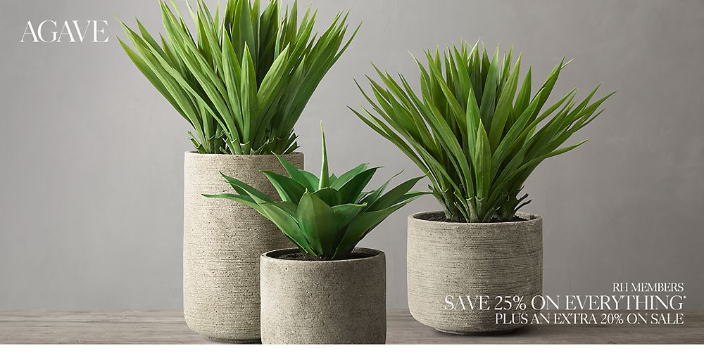 Shop Agave Greenery Décor